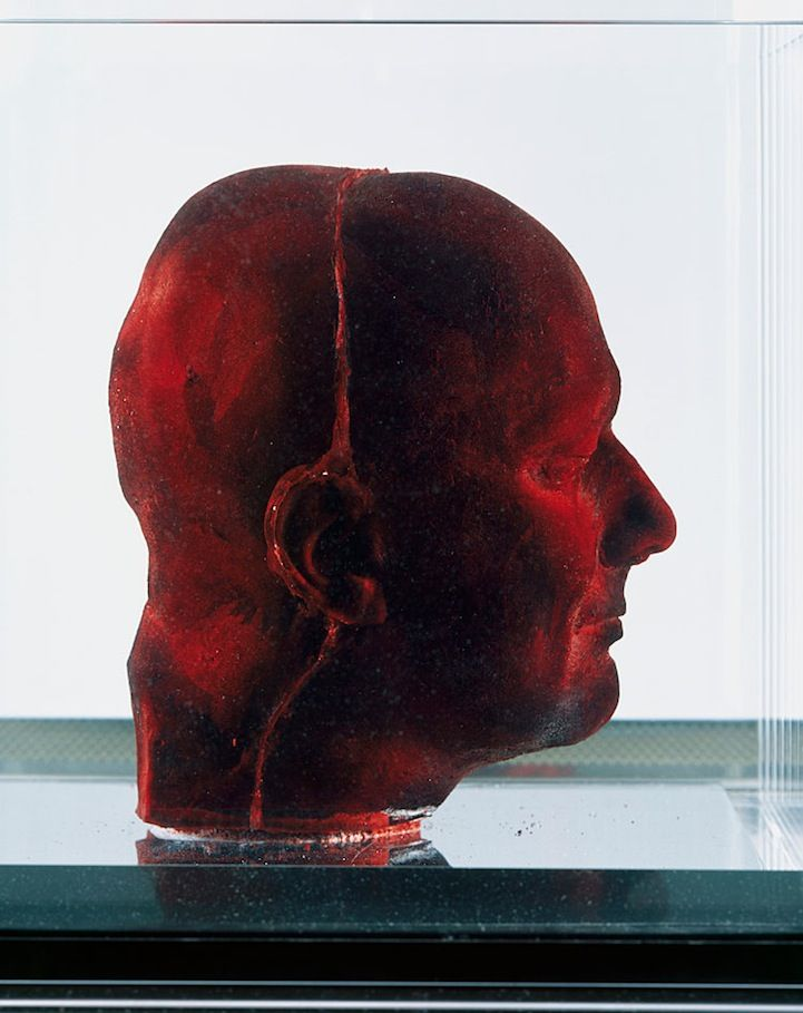 Language of Modern Art: Blood and Beauty