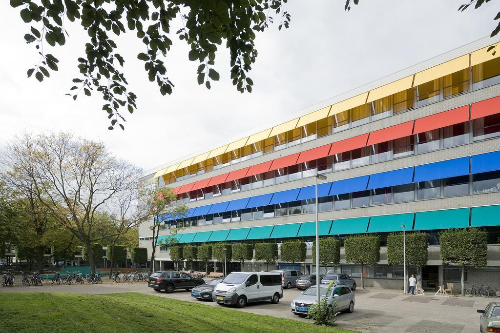 Проект WOW Amsterdam: голкотерапія для депресивних районів