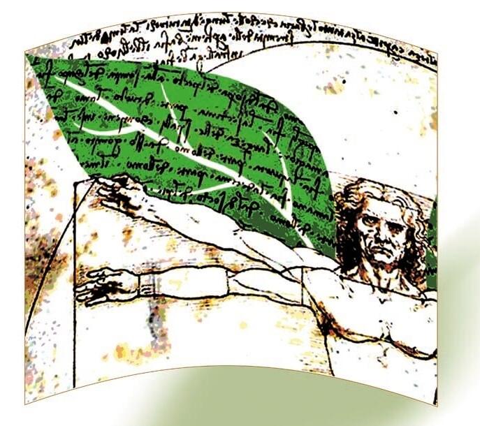 Ангажована гуманітаристика: як будувати учасницьку історичну культуру?