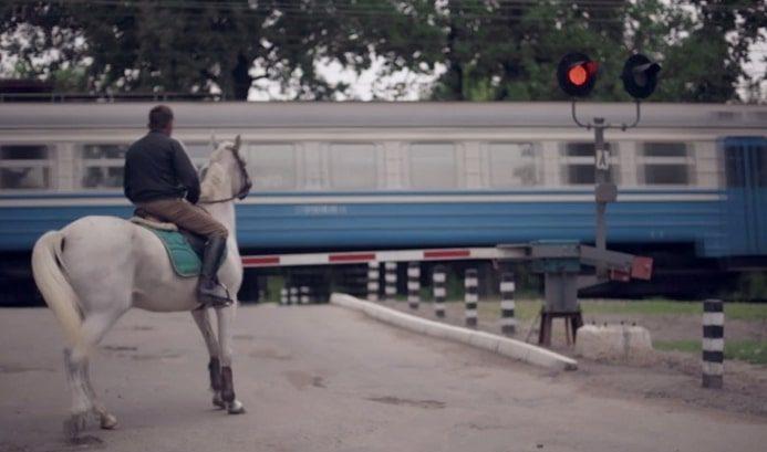 Сірі коні