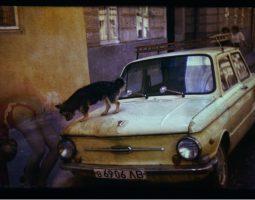 Фотографія як сучасне мистецтво