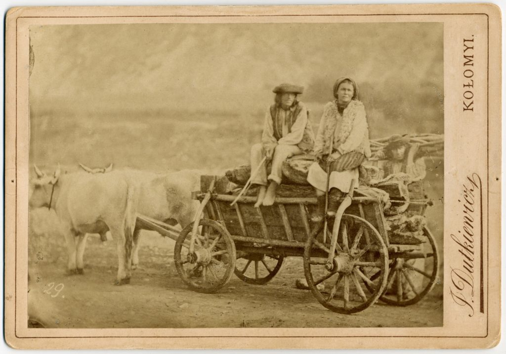 Rural Practice, Commercial Enterprise, or Imperial Service? Juliusz Dutkiewicz's Carpathian Ethnographic and Landscape Photography