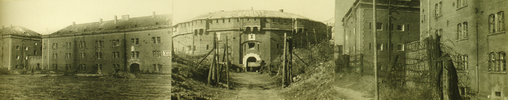 Stalag 328 on the Citadel: Topography of Captivity